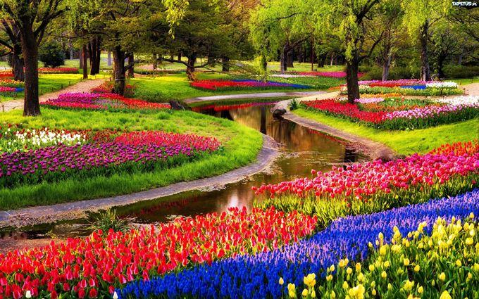 10 kopshtet e luleve me te bukura ne bote